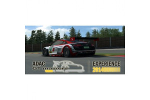 ADAC GT Masters Experience 2014